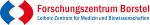 FZ BOrstel Logo