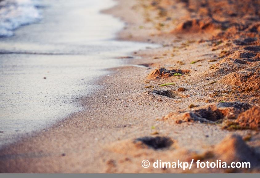 Siliziumdioxid kommt hautsächlich als Sand in der Natur vor © dimakp/ fotolia.com