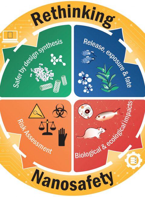 Spotlight Juli 2020: Nanosicherheit – Mehr als nur Regulierungsprozesse