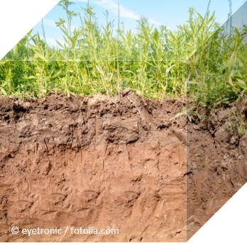 Cross-section of different soil layers ©eyetronic / fotolia.com
