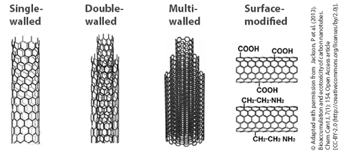 Overview on different carbon nanotube structures: single-walled (SWCNT), double-walled (DWCNT), multi-walled (MWCNT) and possible surface modifications.