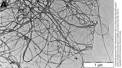 TEM picture of carbon nanotubes (CNTs).