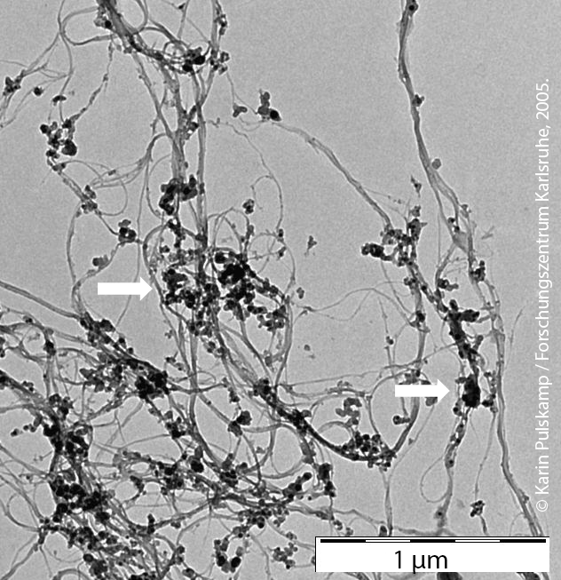 Single-walled carbon nanotubes (SWCNT) with carbon impurities (spherical deposits highlighted with white arrows).