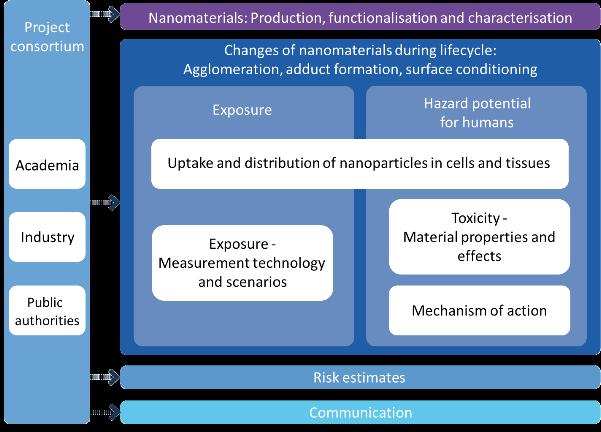 NanoGEM Project Description