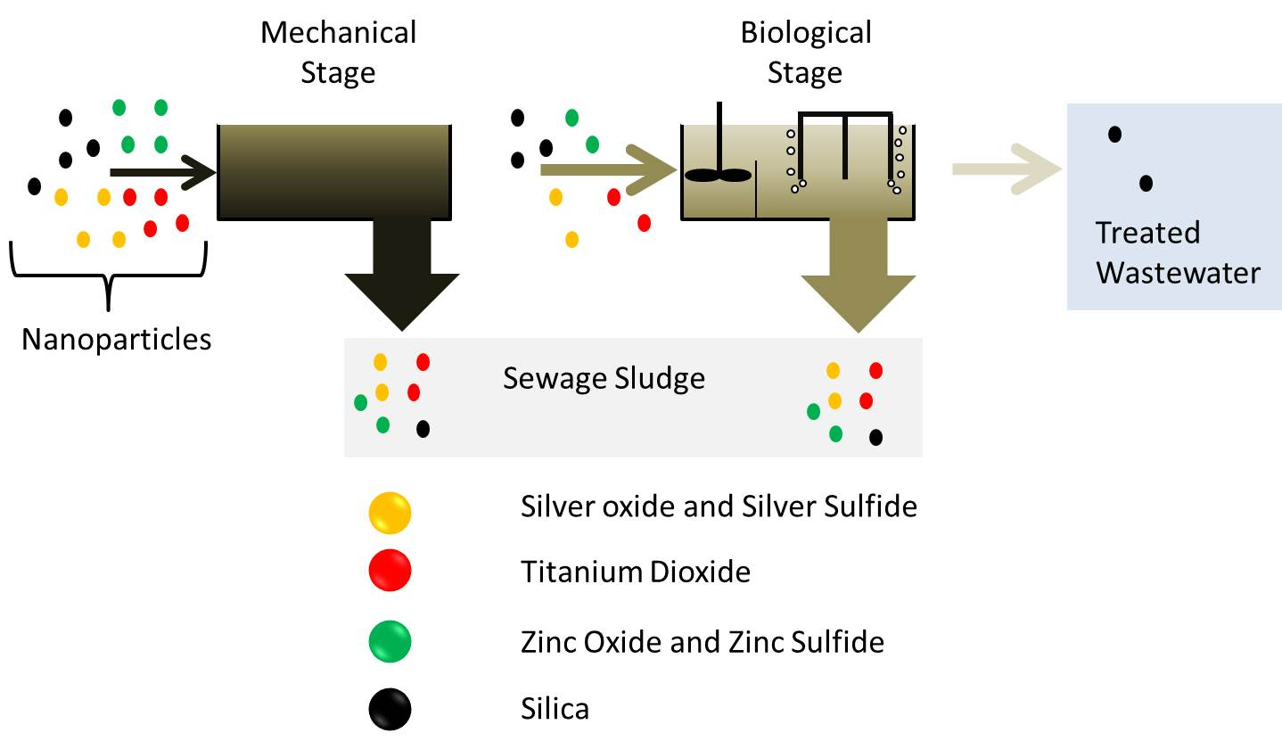 Removal of nanoparticles during the different stages of wastewater treatment plants ©Andreas Mattern, UFZ