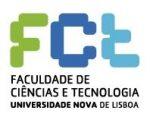 FCT Lisboa Logo