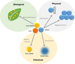 Overview of the transformation processes to which innovative materials are subject ©DaNa